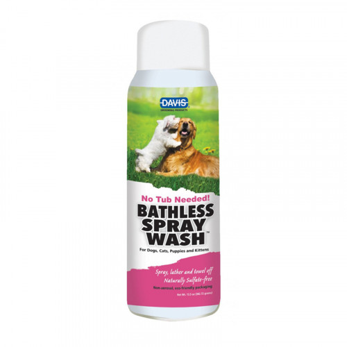 BATHLESS SPRAY WASH